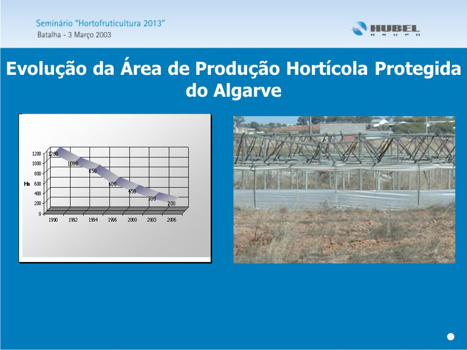 Evolução da Área de Produção Hortícola Protegida do Algarve