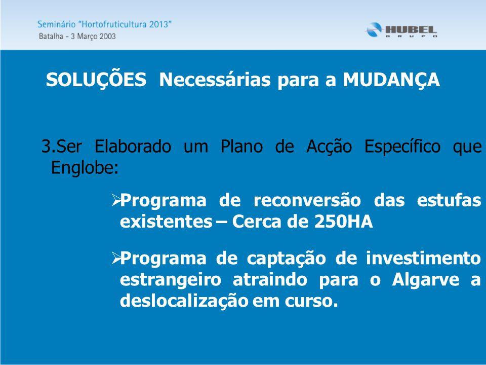 3.Ser Elaborado um Plano de Acção Específico que Englobe:  Programa de reconversão das estufas existentes – Cerca de 250HA  Programa de captação de investimento estrangeiro atraindo para o Algarve a deslocalização em curso.