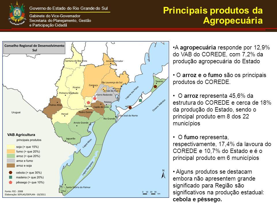 Gabinete do Vice-Governador Secretaria do Planejamento, Gestão e Participação Cidadã Governo do Estado do Rio Grande do Sul Na pecuária, destacam-se a produções de bovinos e leite, que representam 16,7% da produção estadual Responsável por 62% da pesca estadual, com destaque na estrutura produtiva dos municípios de São José do Norte e de Rio Grande, onde é o principal produto e, também, nos municípios de Pelotas e Tavares Principais produtos da Agropecuária
