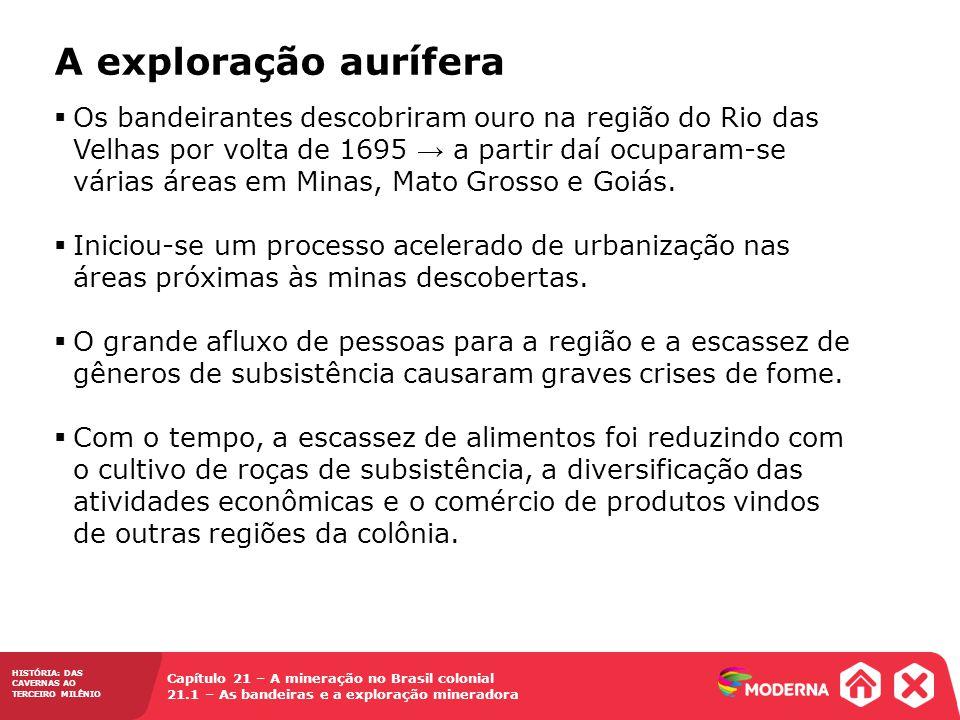 HISTÓRIA: DAS CAVERNAS AO TERCEIRO MILÊNIO Capítulo 21 – A mineração no Brasil colonial 21.1 – As bandeiras e a exploração mineradora  Os bandeirante