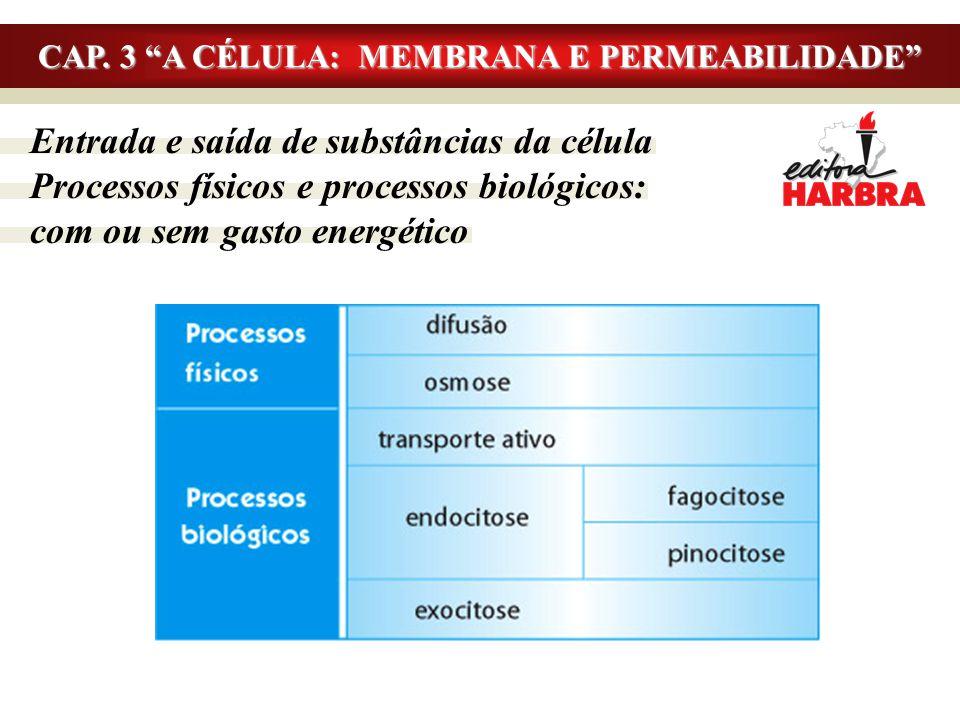 """Entrada e saída de substâncias da célula Processos físicos e processos biológicos: com ou sem gasto energético CAP. 3 """"A CÉLULA: MEMBRANA E PERMEABILI"""