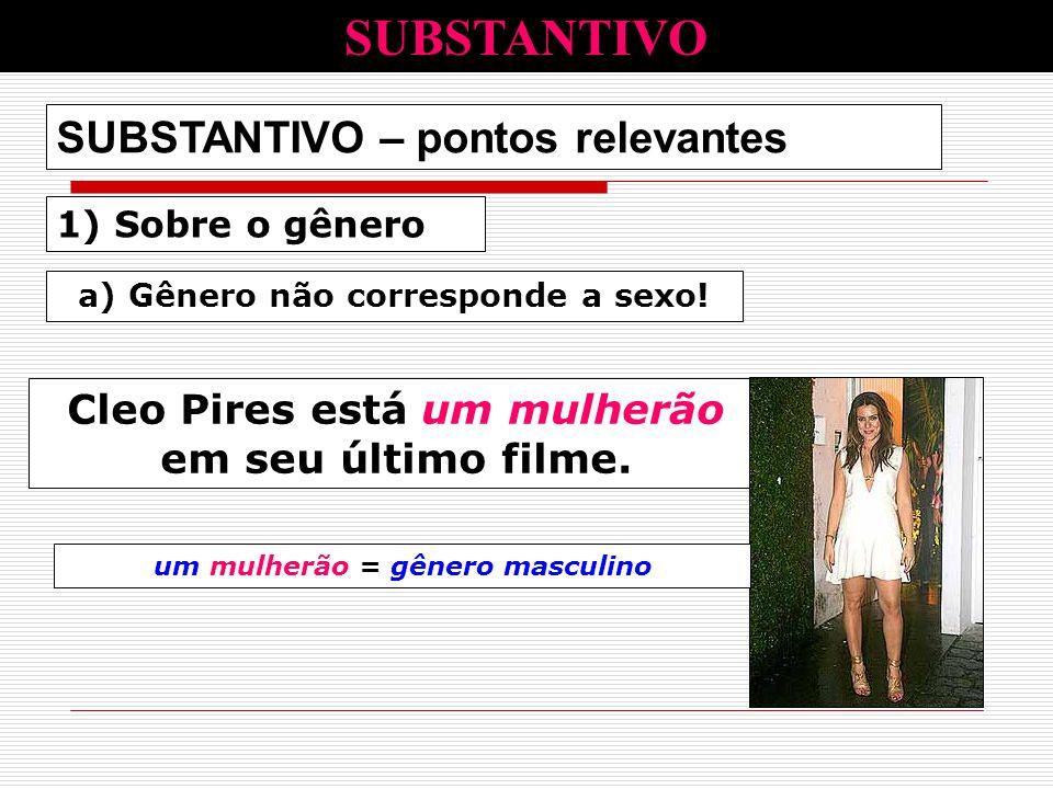 1) Sobre o gênero SUBSTANTIVO – pontos relevantes a) Gênero não corresponde a sexo! Cleo Pires está um mulherão em seu último filme. SUBSTANTIVO um mu