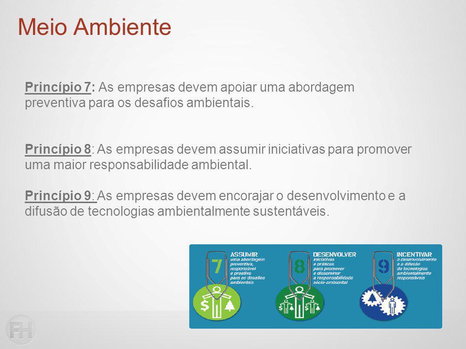 Princípio 7: As empresas devem apoiar uma abordagem preventiva para os desafios ambientais.