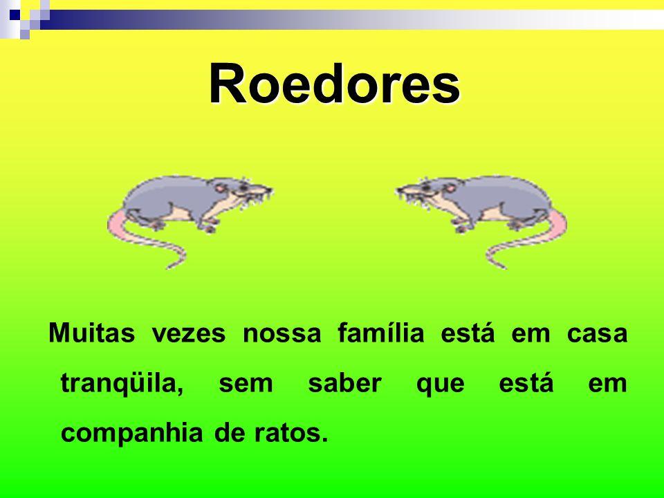 Referências SAÚDE, Ministério da.Roedores, disponível em, www.saúde.gov.br.