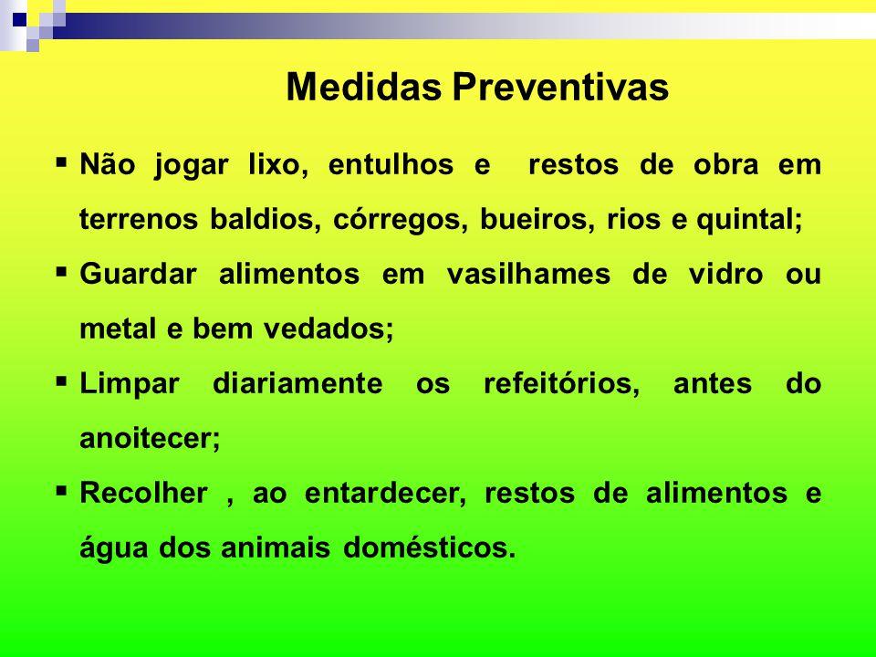 Medidas Preventivas  Não jogar lixo, entulhos e restos de obra em terrenos baldios, córregos, bueiros, rios e quintal;  Guardar alimentos em vasilha