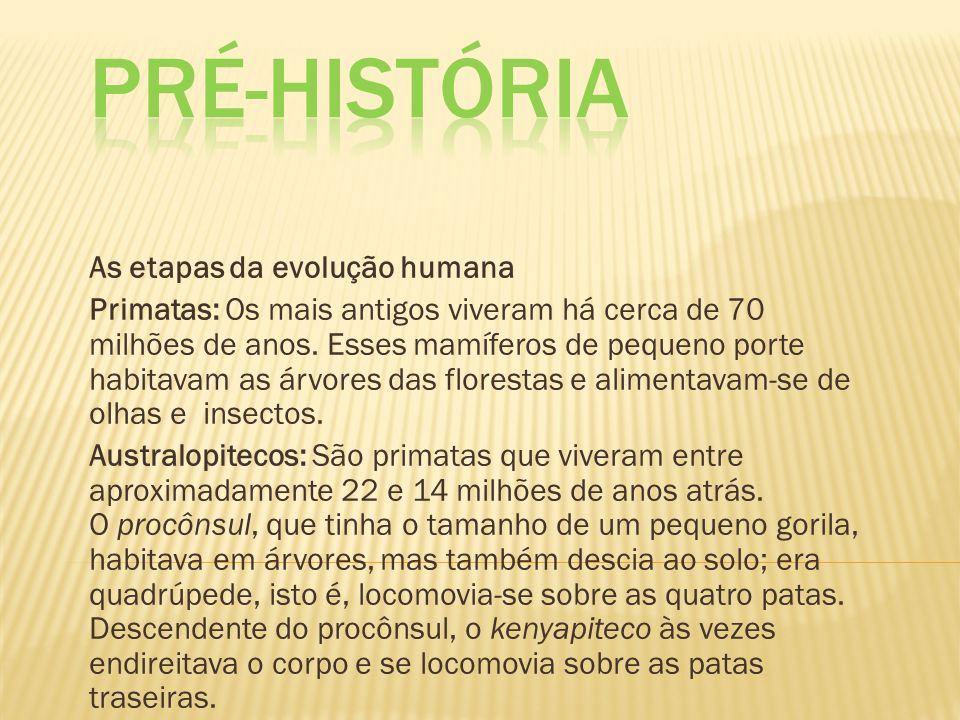 As etapas da evolução humana Primatas: Os mais antigos viveram há cerca de 70 milhões de anos. Esses mamíferos de pequeno porte habitavam as árvores d