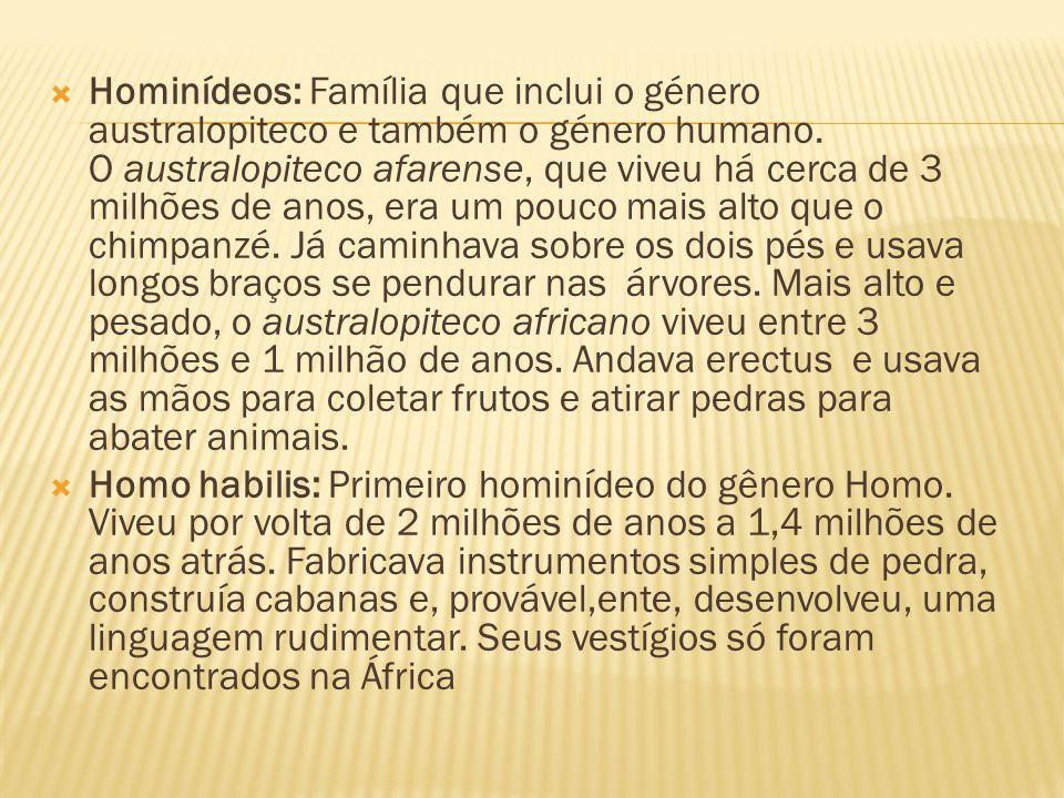  Hominídeos: Família que inclui o género australopiteco e também o género humano. O australopiteco afarense, que viveu há cerca de 3 milhões de anos,