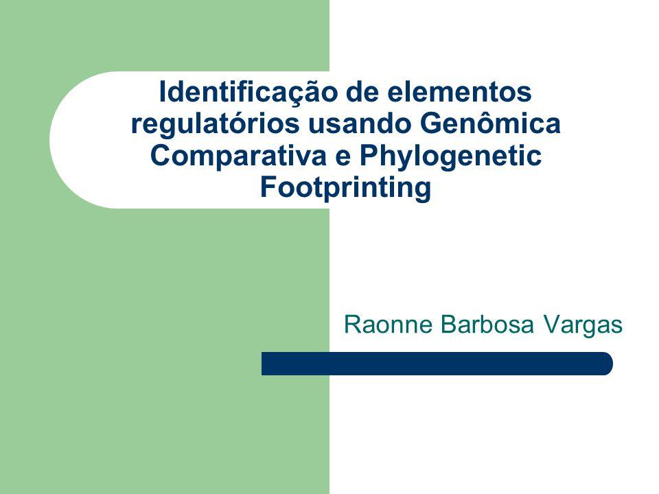 Identificação de elementos regulatórios usando Genômica Comparativa e Phylogenetic Footprinting Raonne Barbosa Vargas