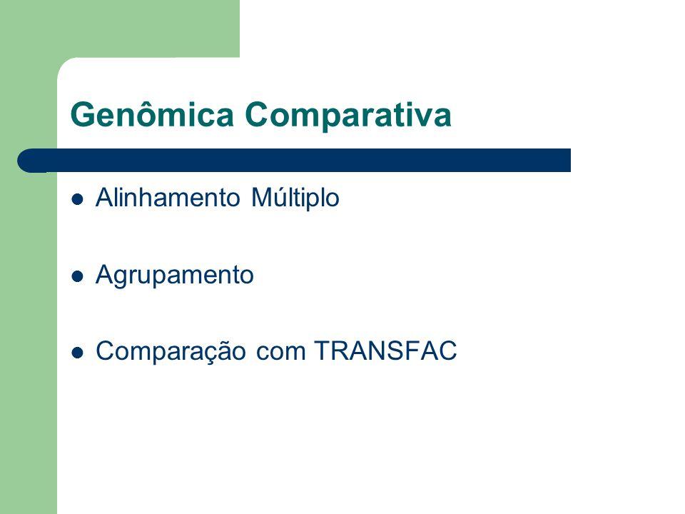 Genômica Comparativa Alinhamento Múltiplo Agrupamento Comparação com TRANSFAC