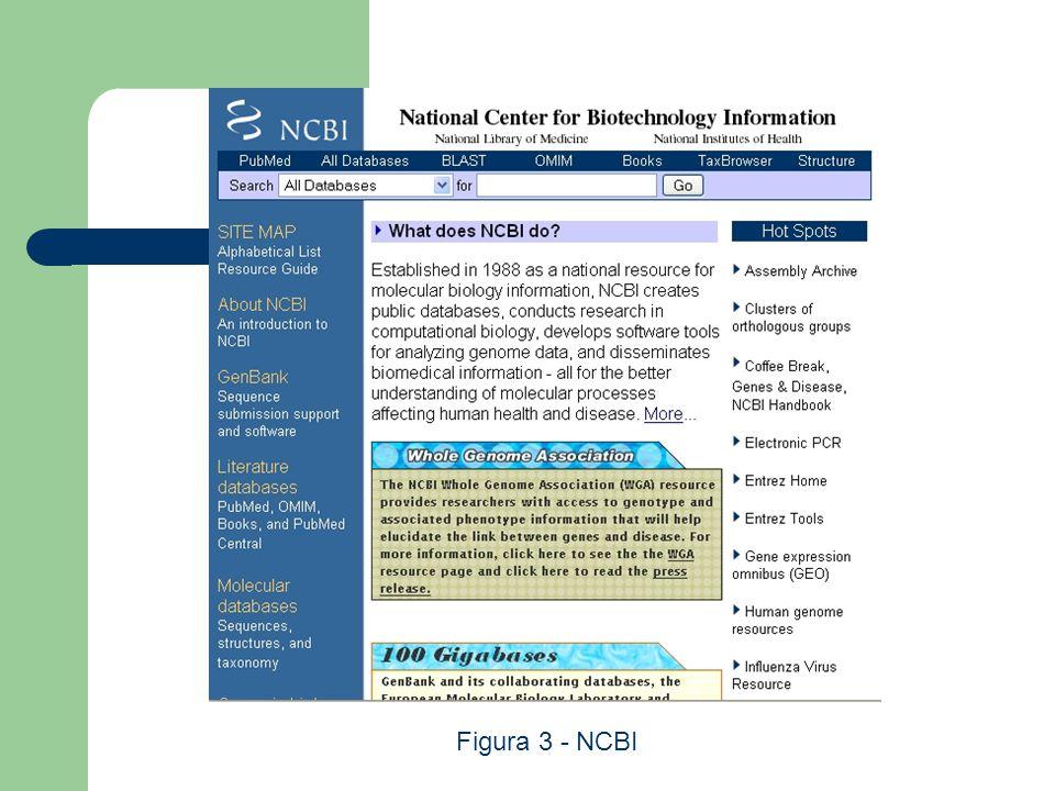 Figura 3 - NCBI