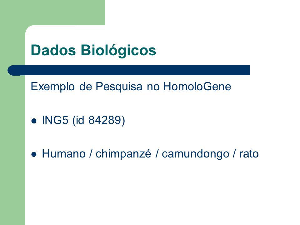 Dados Biológicos Exemplo de Pesquisa no HomoloGene ING5 (id 84289) Humano / chimpanzé / camundongo / rato
