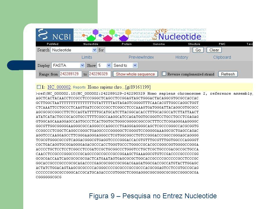 Figura 9 – Pesquisa no Entrez Nucleotide
