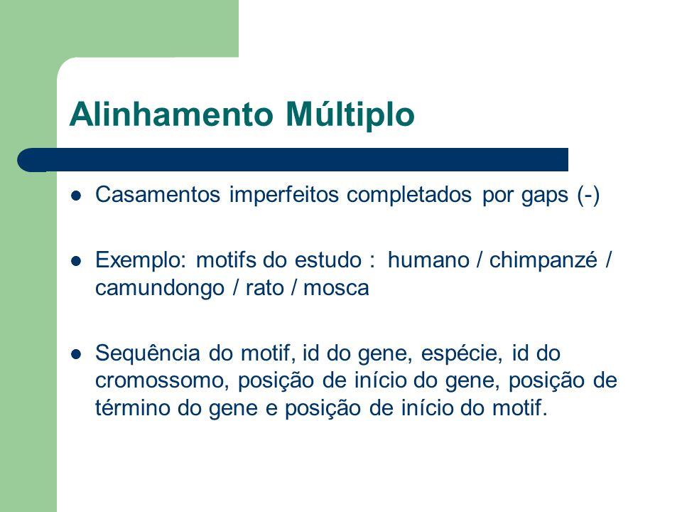Alinhamento Múltiplo Casamentos imperfeitos completados por gaps (-) Exemplo: motifs do estudo : humano / chimpanzé / camundongo / rato / mosca Sequência do motif, id do gene, espécie, id do cromossomo, posição de início do gene, posição de término do gene e posição de início do motif.