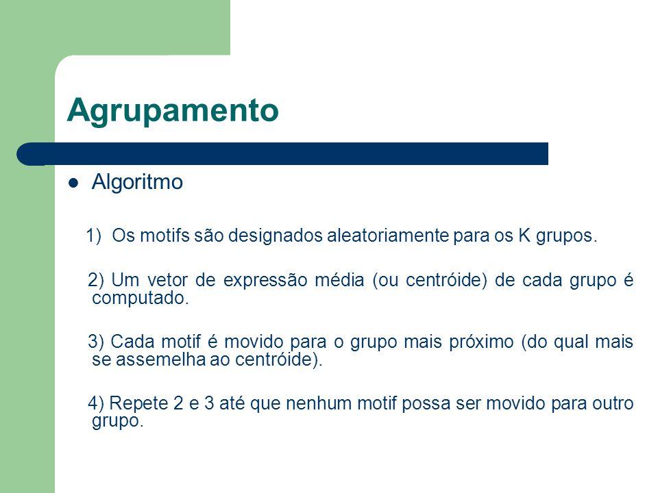 Agrupamento Algoritmo 1) Os motifs são designados aleatoriamente para os K grupos.