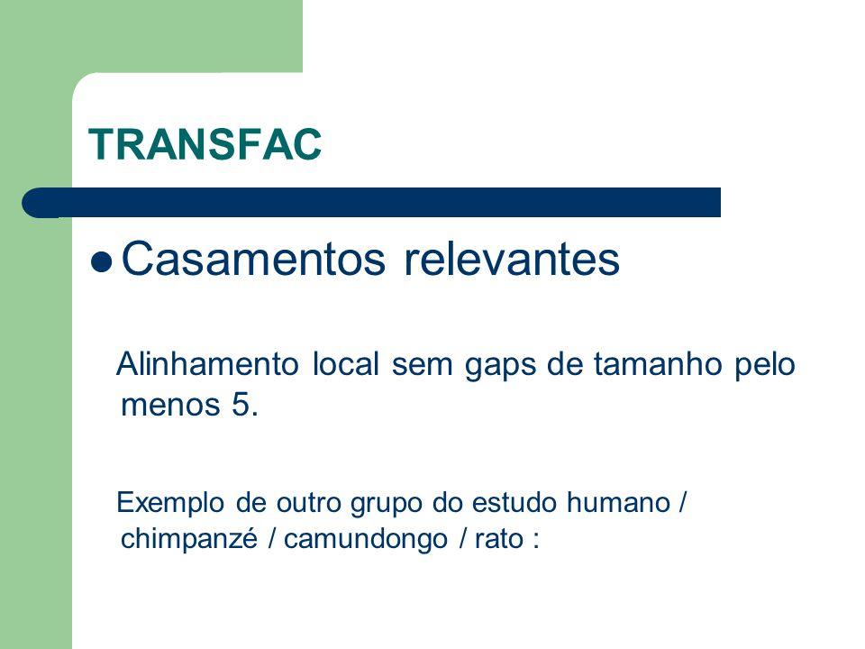TRANSFAC Casamentos relevantes Alinhamento local sem gaps de tamanho pelo menos 5.