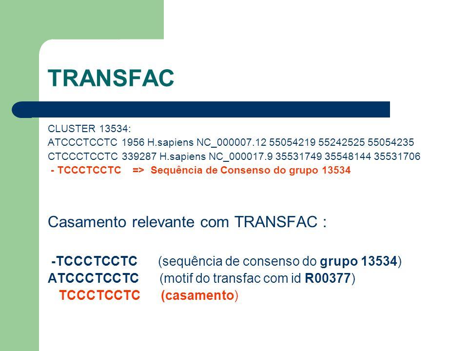 TRANSFAC CLUSTER 13534: ATCCCTCCTC 1956 H.sapiens NC_000007.12 55054219 55242525 55054235 CTCCCTCCTC 339287 H.sapiens NC_000017.9 35531749 35548144 35531706 - TCCCTCCTC => Sequência de Consenso do grupo 13534 Casamento relevante com TRANSFAC : -TCCCTCCTC (sequência de consenso do grupo 13534) ATCCCTCCTC (motif do transfac com id R00377) TCCCTCCTC (casamento)
