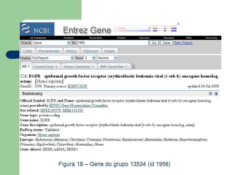 TRANSFAC Figura 18 – Gene do grupo 13534 (id 1956)