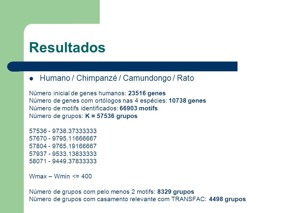 Resultados Humano / Chimpanzé / Camundongo / Rato Número inicial de genes humanos: 23516 genes Número de genes com ortólogos nas 4 espécies: 10738 genes Número de motifs identificados: 66903 motifs Número de grupos: K = 57536 grupos 57536 - 9738.37333333 57670 - 9795.11666667 57804 - 9765.19166667 57937 - 9533.13833333 58071 - 9449.37833333 Wmax – Wmin <= 400 Número de grupos com pelo menos 2 motifs: 8329 grupos Número de grupos com casamento relevante com TRANSFAC: 4498 grupos
