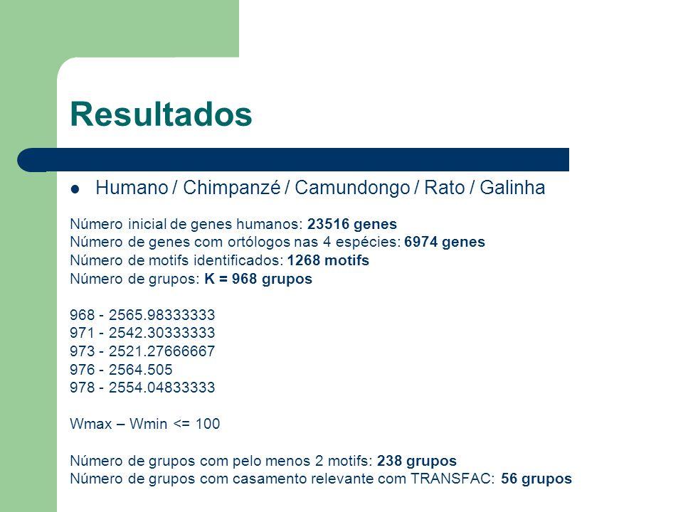 Resultados Humano / Chimpanzé / Camundongo / Rato / Galinha Número inicial de genes humanos: 23516 genes Número de genes com ortólogos nas 4 espécies: 6974 genes Número de motifs identificados: 1268 motifs Número de grupos: K = 968 grupos 968 - 2565.98333333 971 - 2542.30333333 973 - 2521.27666667 976 - 2564.505 978 - 2554.04833333 Wmax – Wmin <= 100 Número de grupos com pelo menos 2 motifs: 238 grupos Número de grupos com casamento relevante com TRANSFAC: 56 grupos