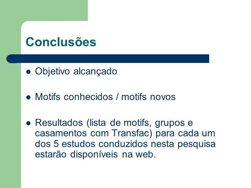 Conclusões Objetivo alcançado Motifs conhecidos / motifs novos Resultados (lista de motifs, grupos e casamentos com Transfac) para cada um dos 5 estudos conduzidos nesta pesquisa estarão disponíveis na web.