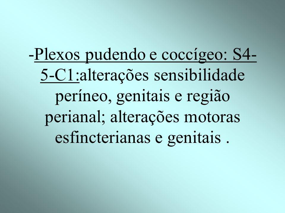 -Plexo sacral: L4,L5 e S1-S3 = rara, mais comum: raízes da cauda equina e do tronco lombosacro (origem do nervo ciático); deficit motor: mm. flexores