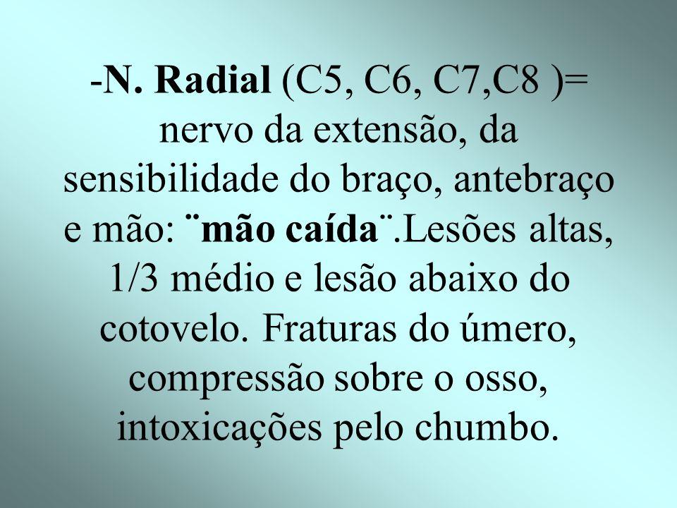 -N. Circunflexo ou Axilar(C5- C6)= paralisia do deltóide. Causa: deslocamento do úmero -N. Músculo-cutâneo (C5-C6)= bíceps e braquial anterior. Trauma