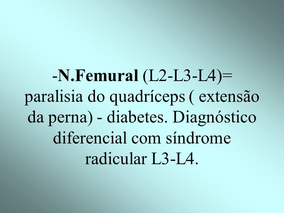 -N. Femurocutâneo (L2-L3) n.cutâneo lateral da coxa= sensibilidade da face externa da coxa. : meralgia parestésica.