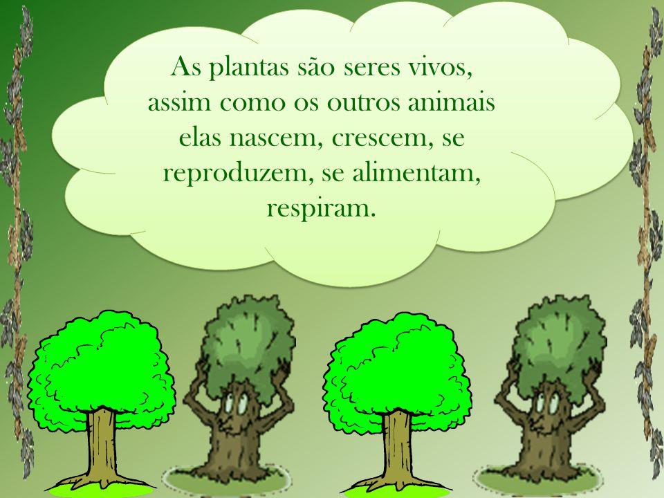 As plantas são seres vivos, assim como os outros animais elas nascem, crescem, se reproduzem, se alimentam, respiram.