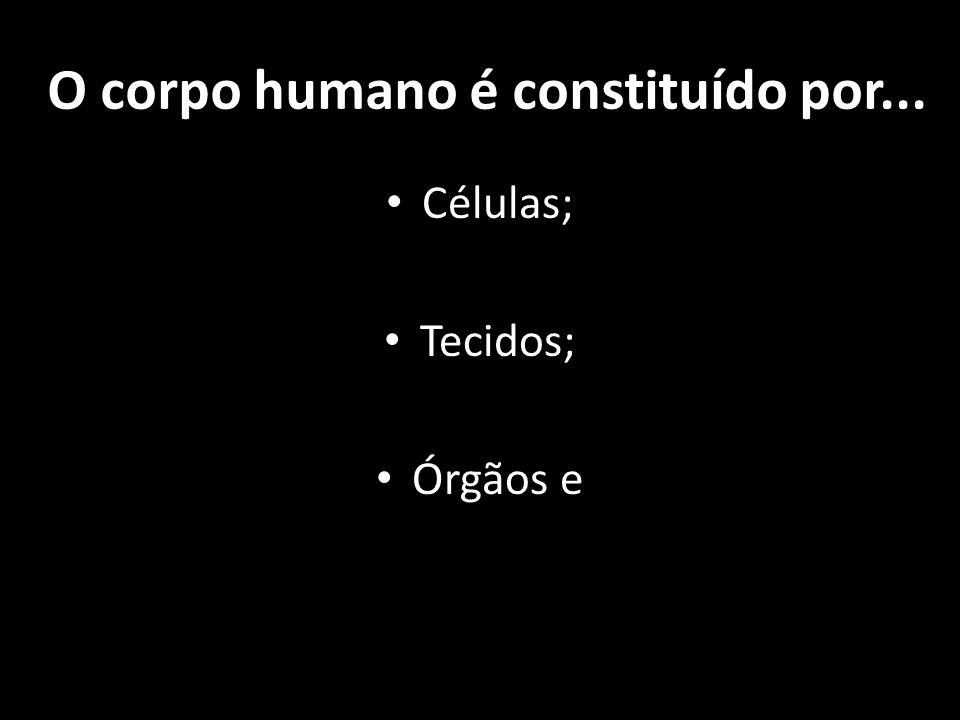 O corpo humano é constituído por... Células; Tecidos; Órgãos e
