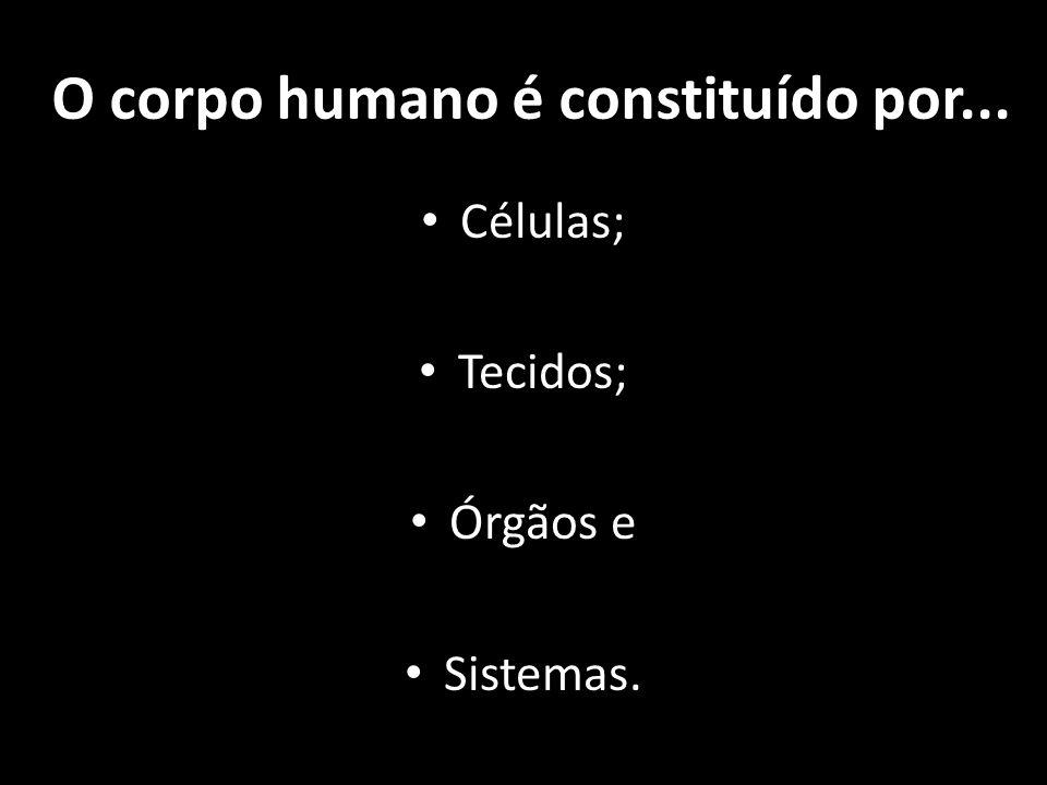 O corpo humano é constituído por... Células; Tecidos; Órgãos e Sistemas.