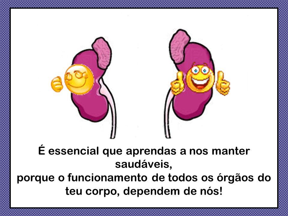 É essencial que aprendas a nos manter saudáveis, porque o funcionamento de todos os órgãos do teu corpo, dependem de nós!