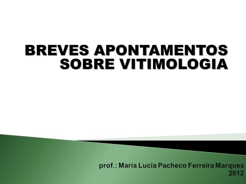 BREVES APONTAMENTOS SOBRE VITIMOLOGIA