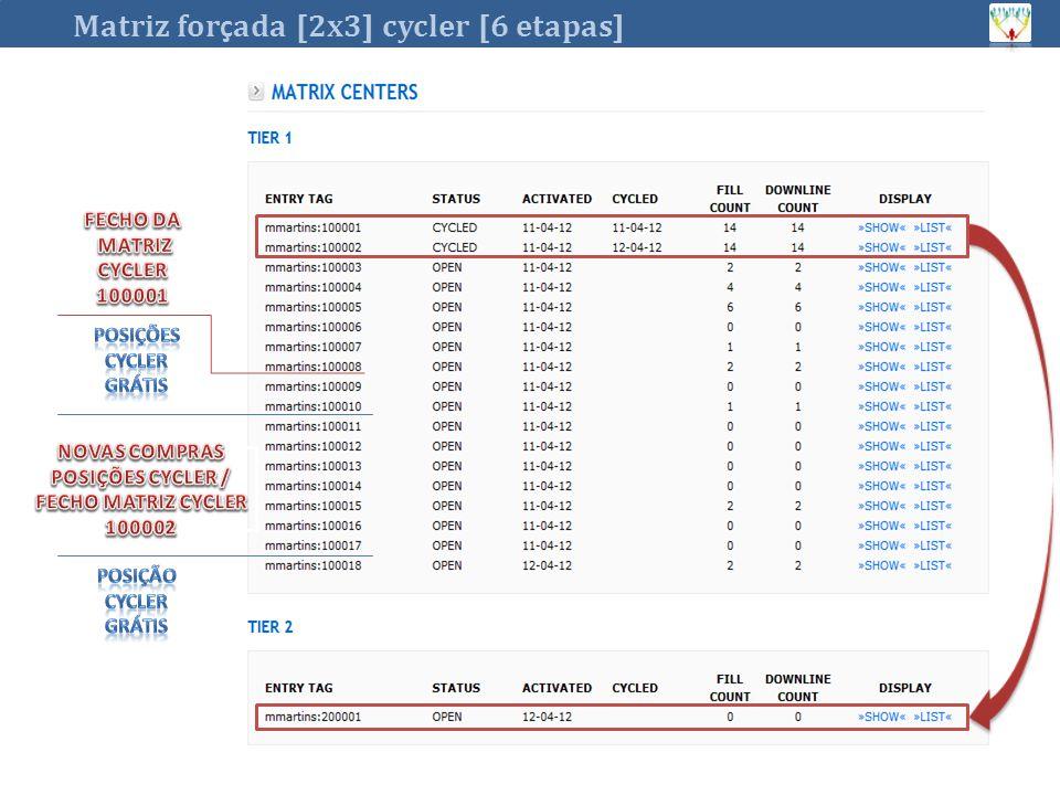 Matriz for ç ada [2x3] cycler [6 etapas]