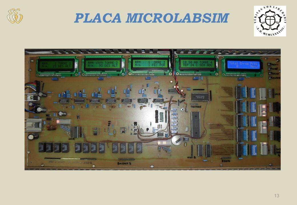 PLACA MICROLABSIM 13