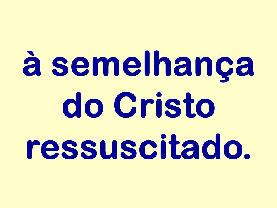 à semelhança do Cristo ressuscitado.