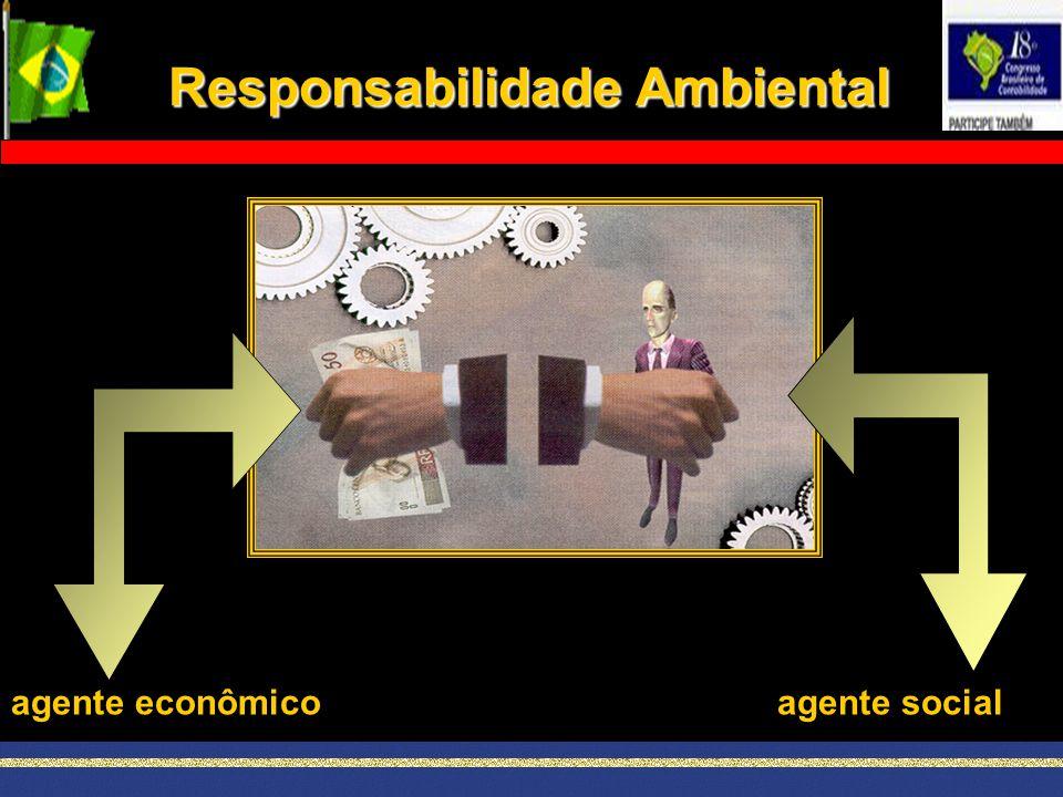 agente econômicoagente social Responsabilidade Ambiental