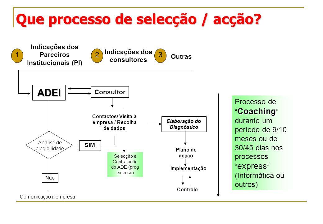 Que processo de selecção / acção? Que processo de selecção / acção? Indicações dos Parceiros Institucionais (PI) Indicações dos consultores Outras 123