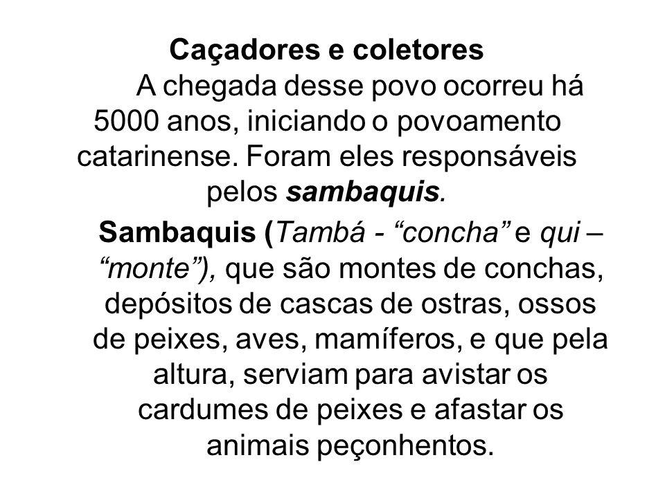 Sambaquis (Tambá - concha e qui – monte ), que são montes de conchas, depósitos de cascas de ostras, ossos de peixes, aves, mamíferos, e que pela altura, serviam para avistar os cardumes de peixes e afastar os animais peçonhentos.