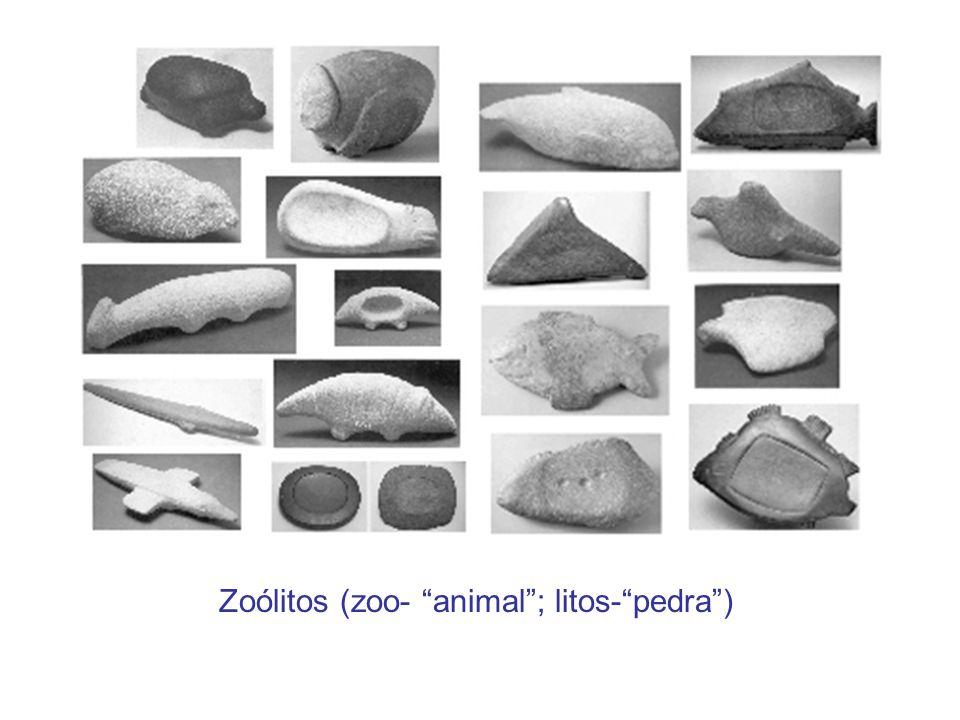 Zoólitos (zoo- animal ; litos- pedra )