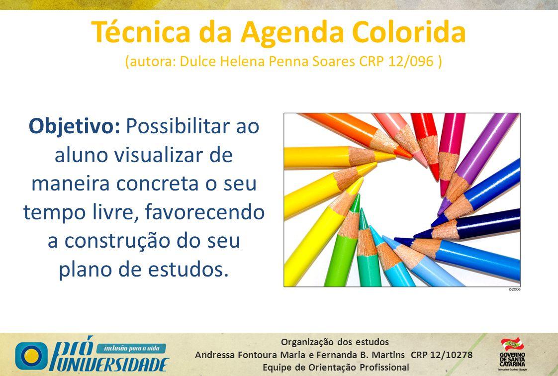 Organização dos estudos Andressa Fontoura Maria e Fernanda B. Martins CRP 12/10278 Equipe de Orientação Profissional Técnica da Agenda Colorida (autor