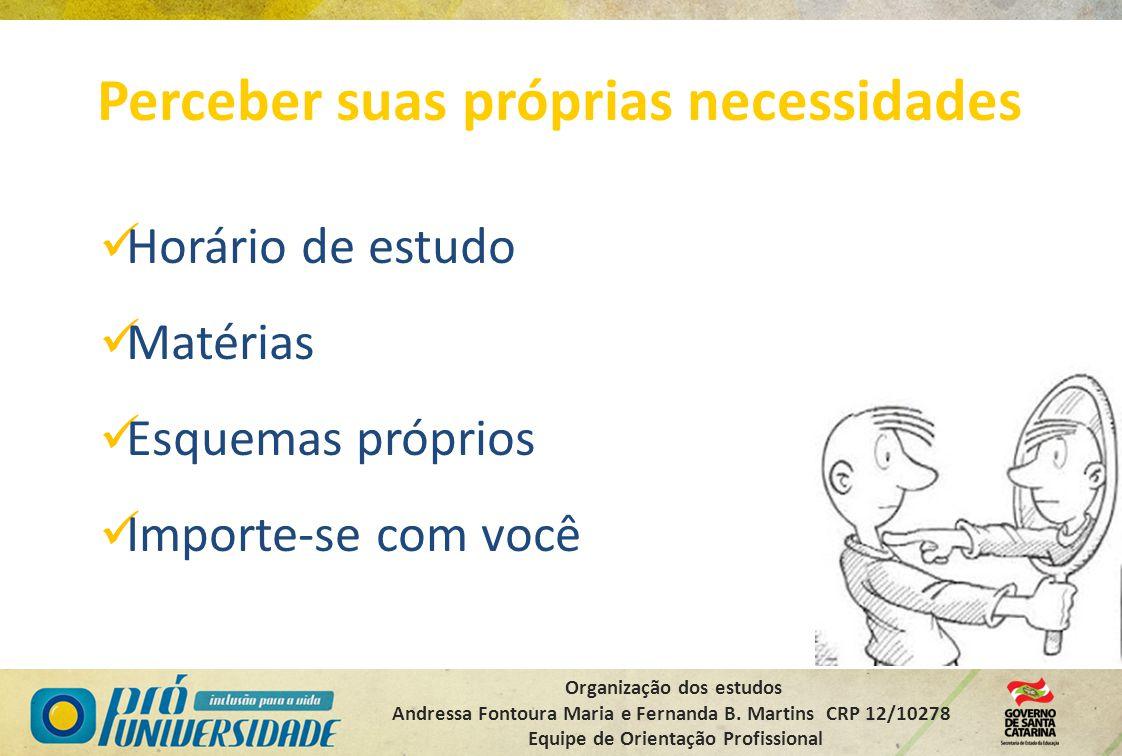 Organização dos estudos Andressa Fontoura Maria e Fernanda B. Martins CRP 12/10278 Equipe de Orientação Profissional Perceber suas próprias necessidad