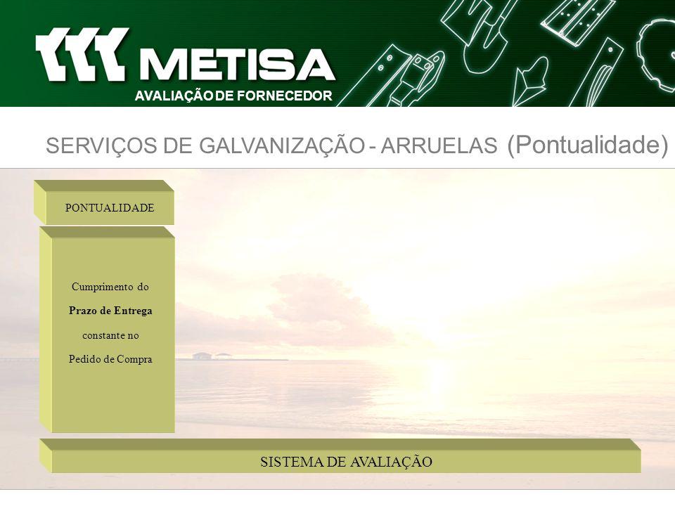 SERVIÇOS DE GALVANIZAÇÃO - ARRUELAS (Pontualidade) AVALIAÇÃO DE FORNECEDOR
