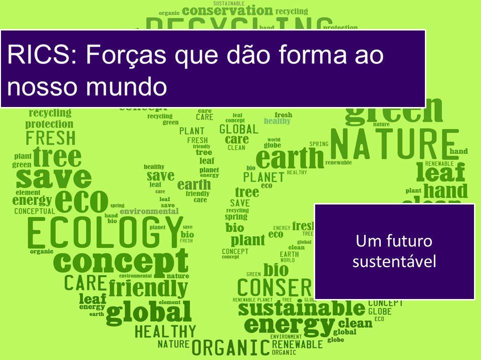 Um futuro sustentável