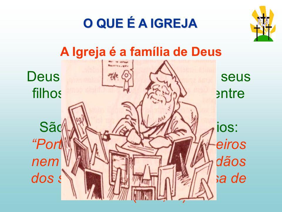 Deus é nosso Pai, nós somos seus filhos, somos irmãos e irmãs entre nós.