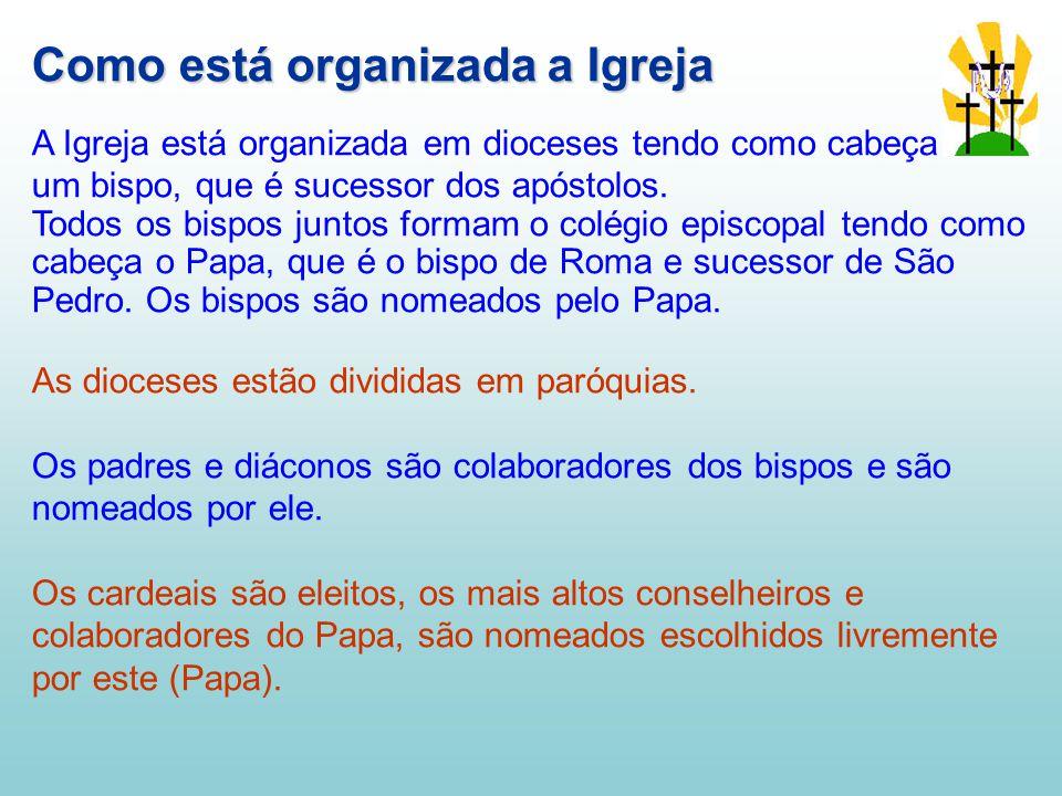 Como está organizada a Igreja A Igreja está organizada em dioceses tendo como cabeça um bispo, que é sucessor dos apóstolos.