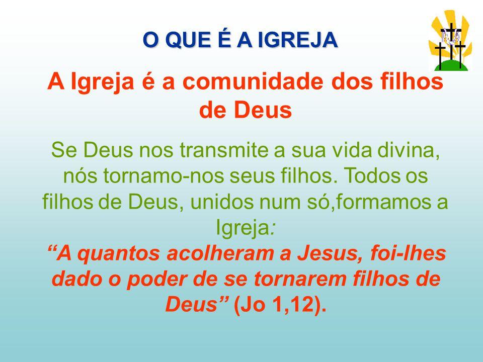 A Igreja é a comunidade dos filhos de Deus Se Deus nos transmite a sua vida divina, nós tornamo-nos seus filhos.