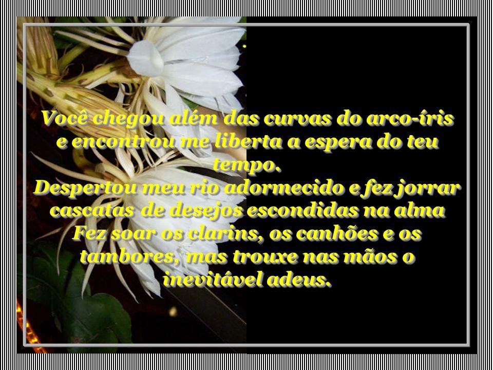 Flores noturnas Flores noturnas Autora: Lady Foppa