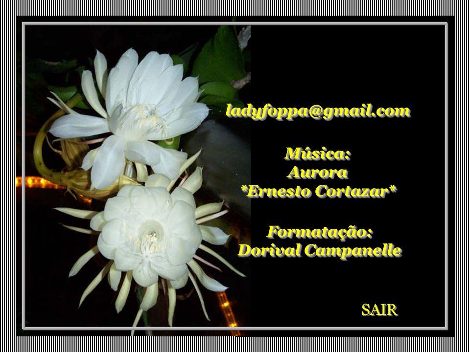 ladyfoppa@gmail.comladyfoppa@gmail.com Música: Aurora *Ernesto Cortazar* Formatação: Dorival Campanelle SAIR