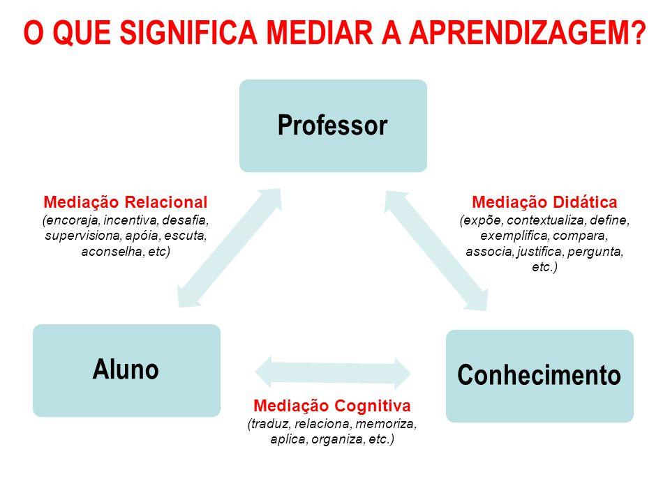 Mediação Didática (expõe, contextualiza, define, exemplifica, compara, associa, justifica, pergunta, etc.) Mediação Relacional (encoraja, incentiva, desafia, supervisiona, apóia, escuta, aconselha, etc) Mediação Cognitiva (traduz, relaciona, memoriza, aplica, organiza, etc.)