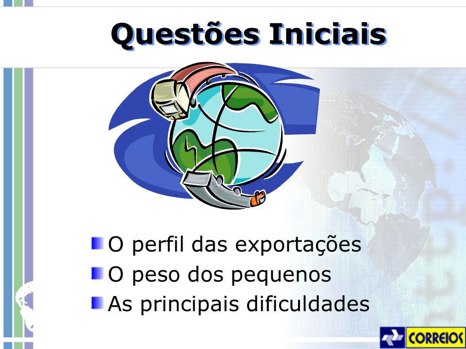 Questões Iniciais O perfil das exportações O peso dos pequenos As principais dificuldades